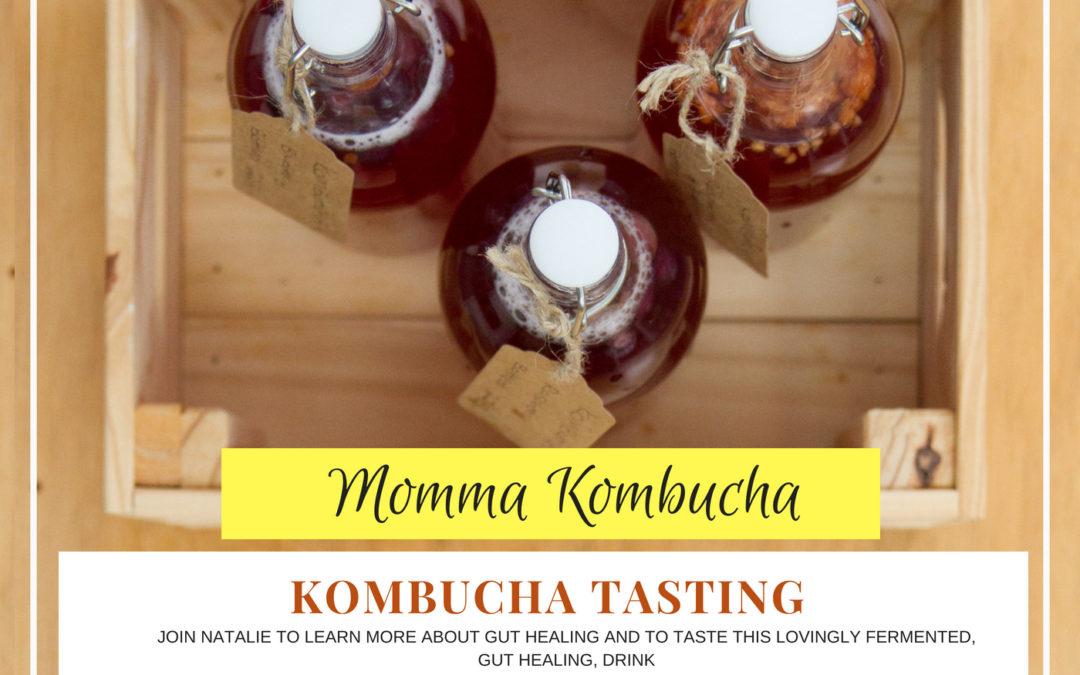 Kombucha tasting at Transform this Week