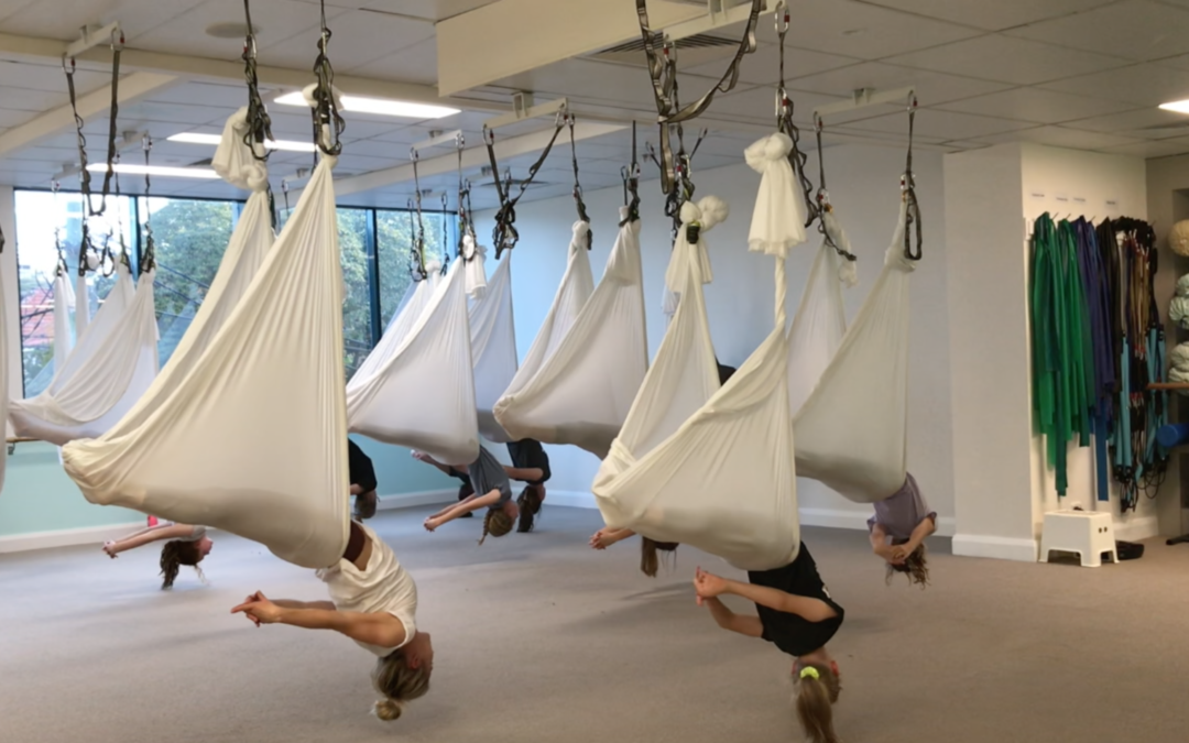 Teen Aerial Holiday Workshop