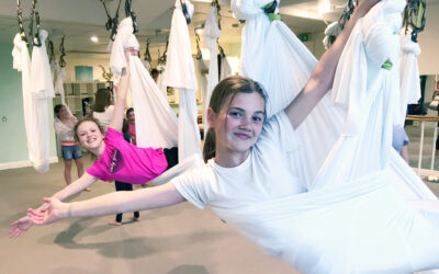School holidays Intro to Aerial Ages 9-18  (OCT 7)